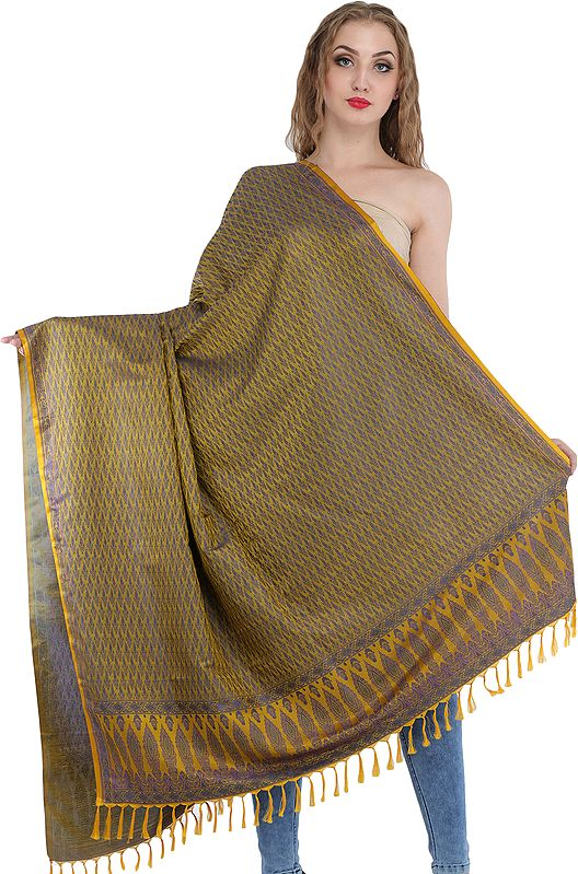 Brocaded Dupatta from Banaras with Tanchoi Weave All-Over