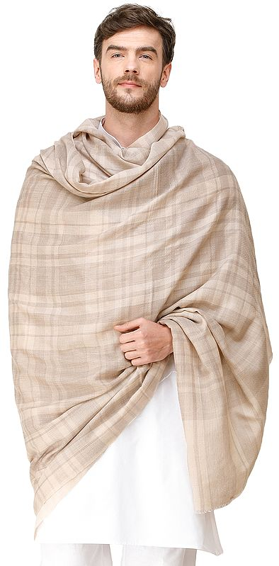 Light-Gray and Beige Men's Cashmere Shawl from Amritsar with Woven Plaids
