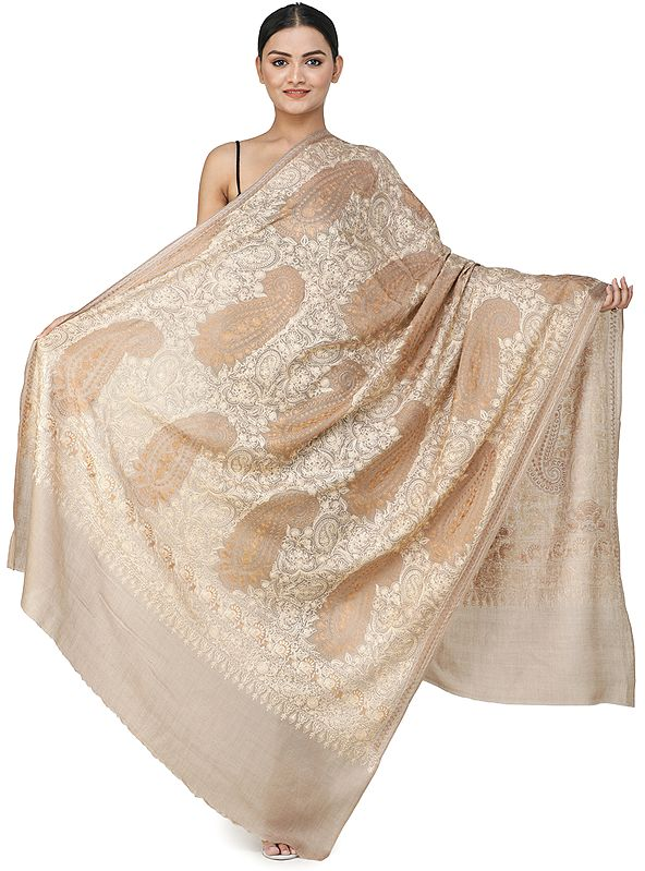 Ari Embroidered Shawl from Amritsar with Floral Vines and Paisleys
