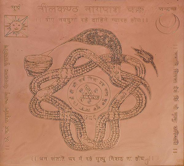 Neelkantha Nagapash Chakra (Yantra Prevents from Snake Biting)