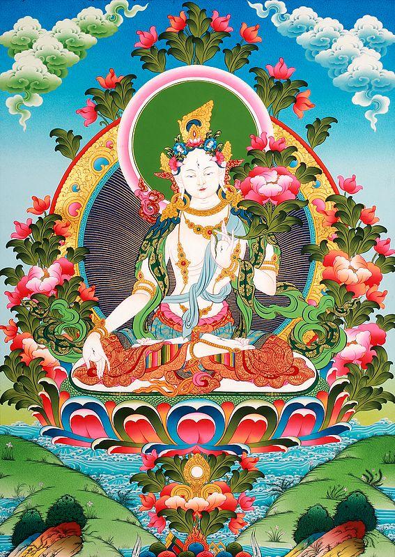 Superfine Tibetan Buddhist Goddess White Tara - The All-Embracing Compassionate Vision
