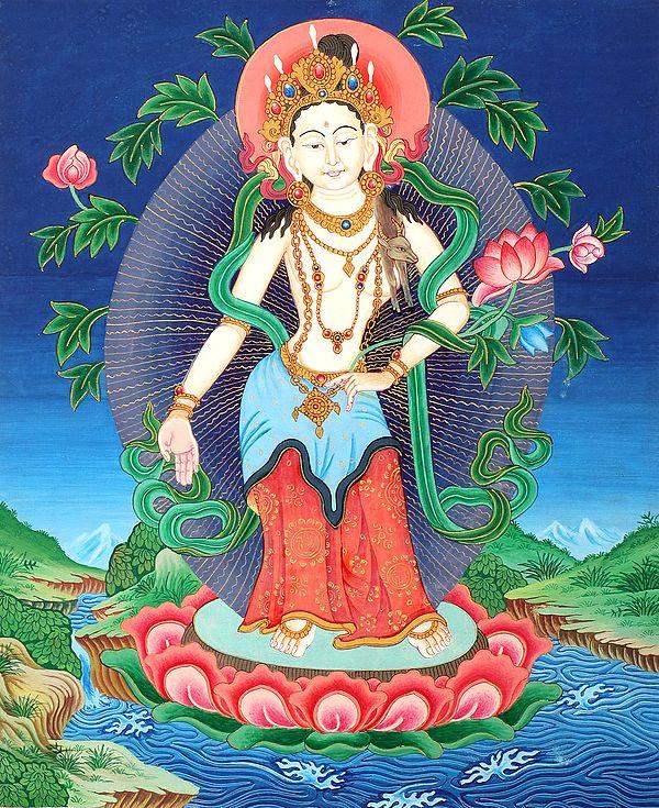 Padmapani Avalokiteshvara  - Tibetan Buddhist Brocadeless Thangka