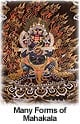The Many Forms of Mahakala, Protector of Buddhist Monasteries