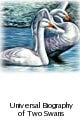 Lost and Found: The Universal Biography of Two Swans